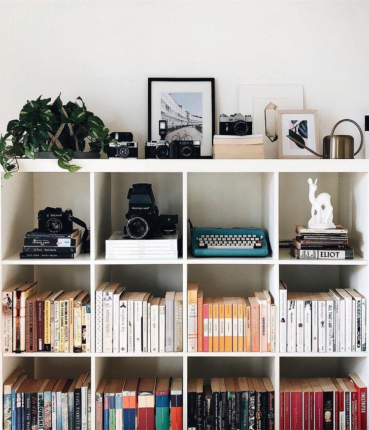 estante com decoração de plantas e livros.jpg